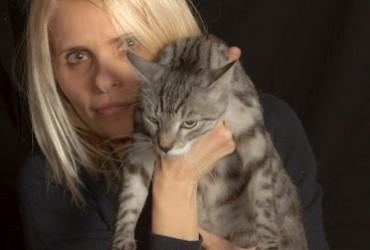 Il vostro gatto in pensione 3